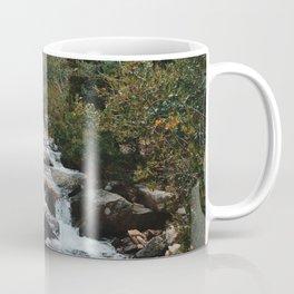Rocky Mountain river Coffee Mug