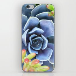 Succulent Bunch iPhone Skin