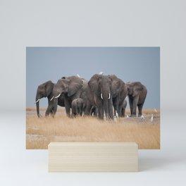 Elephants // Serengeti Mini Art Print