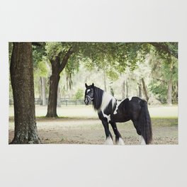 Majestic Horse in Color Rug
