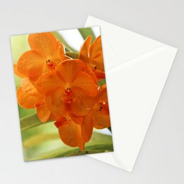 In This World Stationery Cards