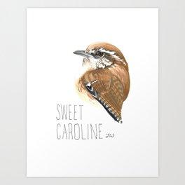Sweet Caroline (Carolina Wren) Art Print