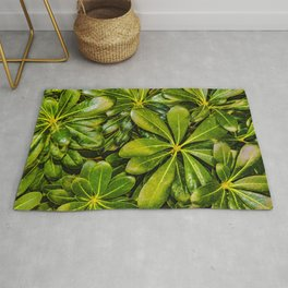 Top View Leaves Photo Rug
