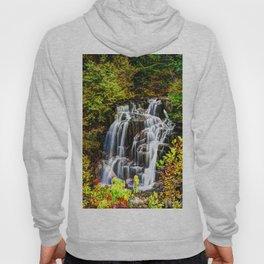 Waterfall # 2 Hoody
