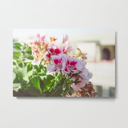 Pink and Red Flowers Metal Print