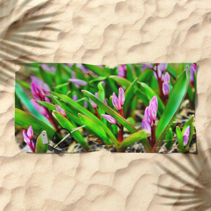 Spring Beginnings Beach Towel