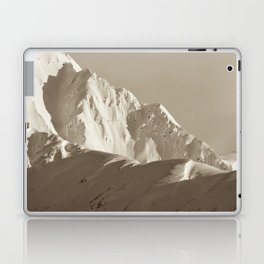 Alaskan Mts. - Mono I Laptop & iPad Skin