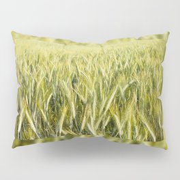 cereal plants grow plenty on field Pillow Sham