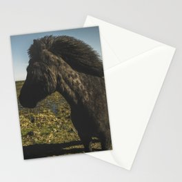 Black Icelandic Pony Stationery Cards