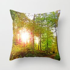 MM - Evening sun in the fall forest Throw Pillow