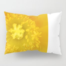 Center of Attention Pillow Sham