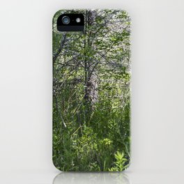 Summer Forest 5 iPhone Case