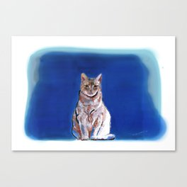 Moco Moco Mocha, the cat Canvas Print