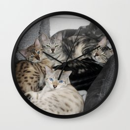 Bengal Cat Kitty Pile  Wall Clock