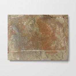 Stein Metal Print