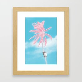 Panda's Palm Tree Lookout Framed Art Print