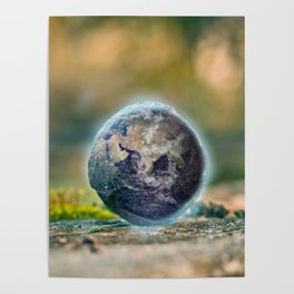 Little Earth Poster