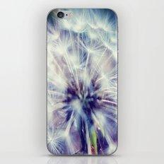 POOF iPhone & iPod Skin