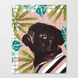 Pug on an Island Canvas Print