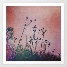 Through Rose Colored Glasses Art Print