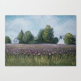 Indiana 61/100 Canvas Print