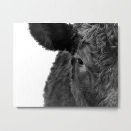 Half calf Metal Print