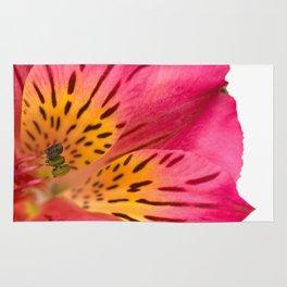 Peruvian Lily Macro Rug