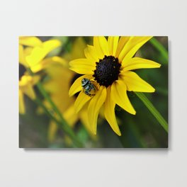 Little Sunshine Metal Print