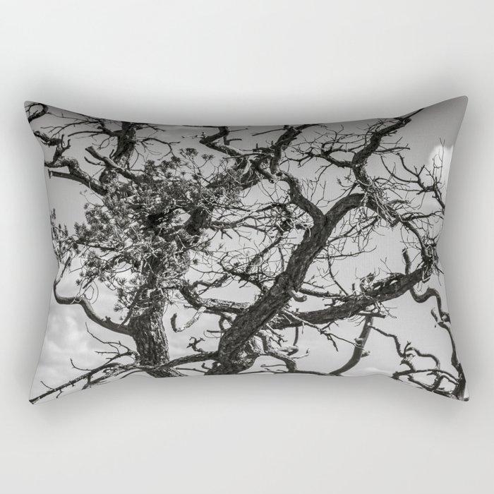 Ancient Tree, Survivor, Alive Rectangular Pillow