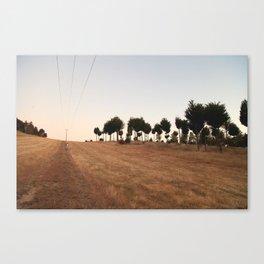 Sunset at Mt Crawford Canvas Print