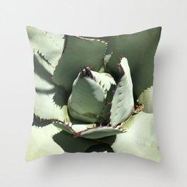 Agave Center Throw Pillow