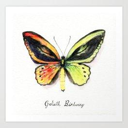 Butterfly: Ember Art Print