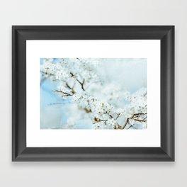 Floral VI Framed Art Print