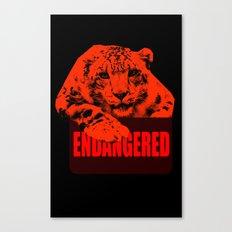 Endangered Snow leopard Canvas Print