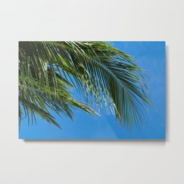 Palm Fronds In The Sky Metal Print