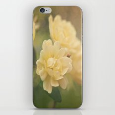 """""""Every man's life is a fairy tale written by God's fingers"""" -- Hans Christian Andersen iPhone & iPod Skin"""
