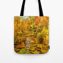 Autumn On The Ammonoosuc Tote Bag