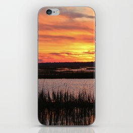 Sky Over The Marsh iPhone Skin