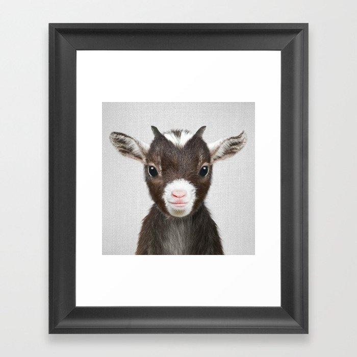 Baby Goat - Colorful Gerahmter Kunstdruck