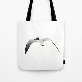 Black Headed Gull By Saribelle Rodriguez Tote Bag