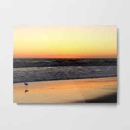 Lone Bird Tiptoes on the Reflecting Beach at Sunset Metal Print