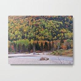 Riverbed in Autumn Metal Print