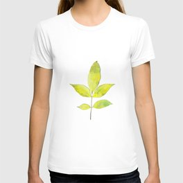 leaves painted with watercolor . designer paintings for eco-style . eco style interior . Sustainable T-shirt