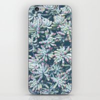 plant iPhone & iPod Skins featuring Plant by Unamoric