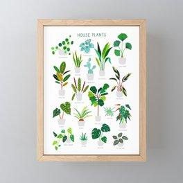 House Plants  Framed Mini Art Print