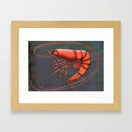 Shrimpy Shrimp Framed Art Print