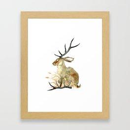 Shed Antler Framed Art Print