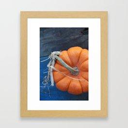 Blue Pumpkin Framed Art Print