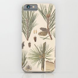 Botanical Pine iPhone Case