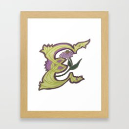 E is for Echinacea Framed Art Print